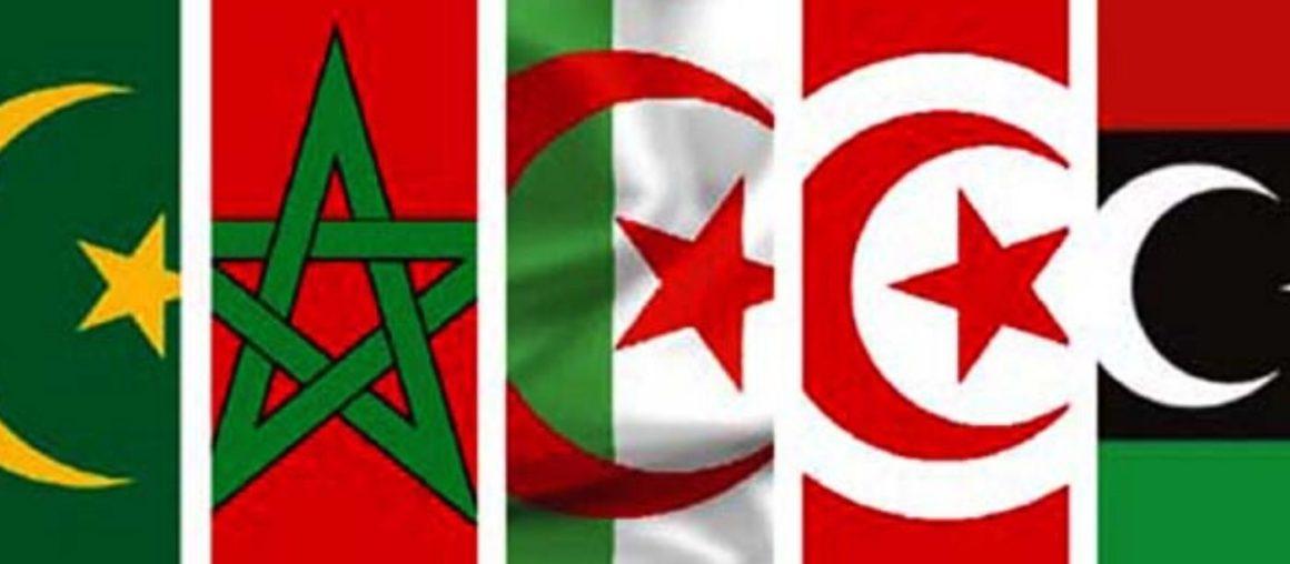 Market penetration of the M.A.U (Maghreb Arab Union)